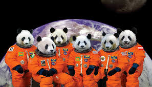 Space Pandas will fly to your planet and eat all of your bamboo!