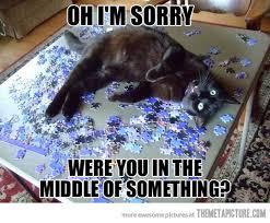 puzzlecat