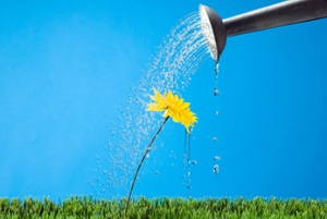 water a flower