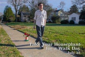 houseplant walk