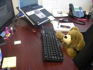 bring teddy bear to work