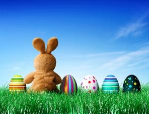 eastereggs_bunny_grass