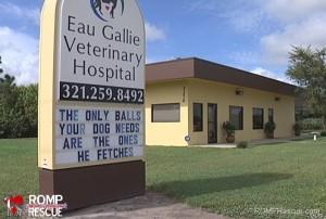 eau-gallie-veterinary-hospital-racy-signs-1-091913