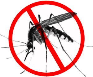 Malaria-Day-Picture