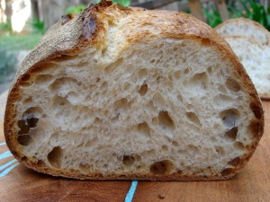norwich-sourdough-sliced-wild-yeast-600