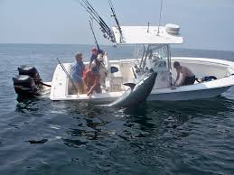 boat fish