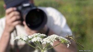 _67791964_bbcnature_wildlife_photography_beginners_david_chapman_nhpa_photoshot_zb807_218000_0333