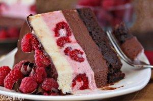 chocolate-raspberry-mousse-cake-6