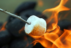 toasted-marshmallow-day