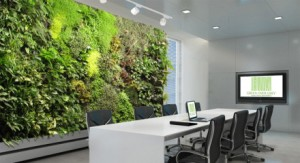 living-green-walls-improve-your-office-e1369838916361
