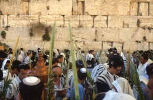 pikiwiki_israel_14882_western_wall_in_jerusalem