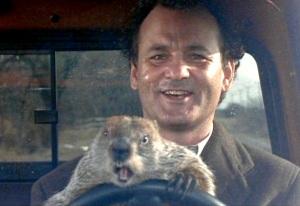 groundhog-day-bill-murray-phil