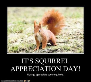 squirrelappreciationmotivational