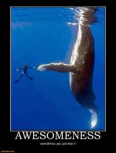 awesomeness-awesomeness-demotivational-posters-1295458933